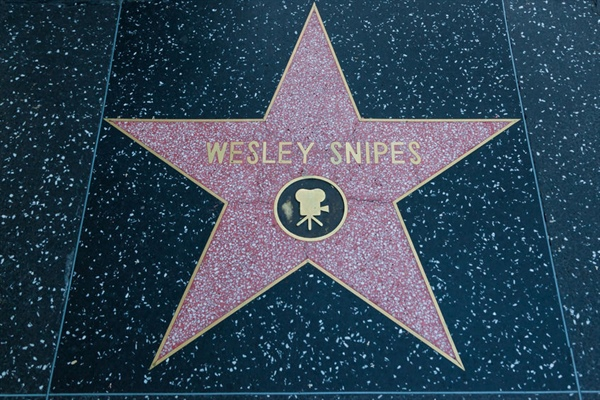 Painful IRS Lessons Continue For Actor Wesley Snipes