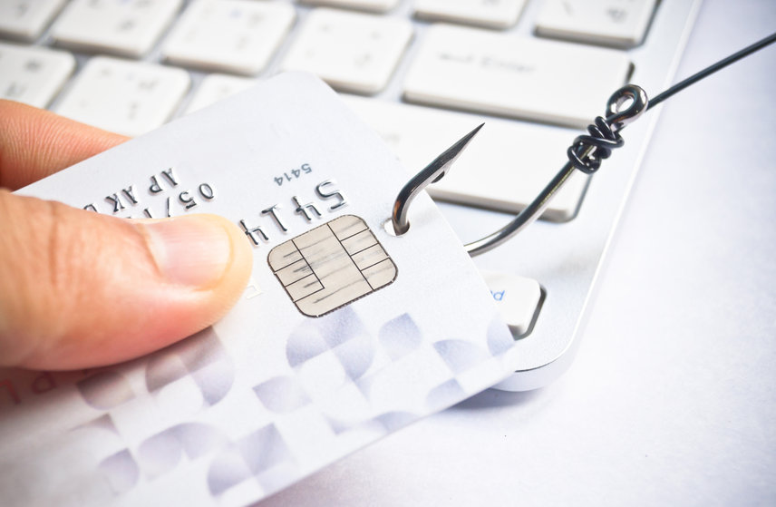 Phishing at Work: An Expense You Can't Afford